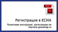 Инструкция ЕСИА